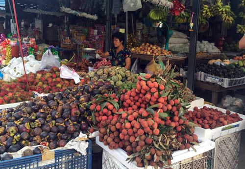 Hàng Việt chịu sức ép tại Lào